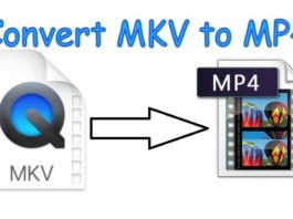 how to convert mkv to mp4